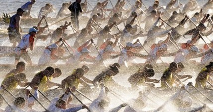 Sydney. Dragon boat race