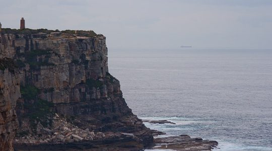 During nice and calm days there are places where it is possible to see whales from the shore in Sydney. Check this map.
