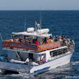 This timetable and price list of whale watching in Sydney, 2014. The latest prices and updates on whale watching in Sydney check here. Darling Harbour | Circular Quay | Manly […]