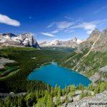 Lake O'Hara, Yoho NP, Alberta, Canada
