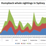 Humpback whale sightings in Sydney 2009-2011