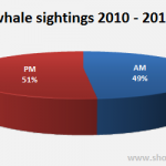 Morning and afternoon whale sightings in Sydney (2010-2012)