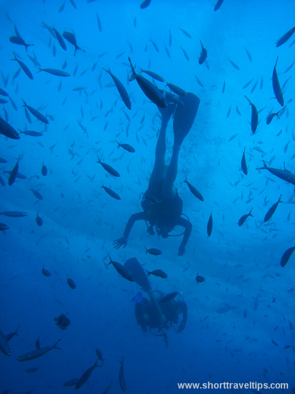 Scuba diving at Great Barrier reef in Australia
