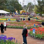 Floriade in Commonwealth Park in Canberra, Australia