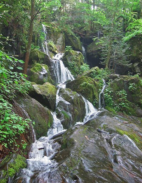 Place of a Thousand Drips, along the Roaring Fork Road, Great Smoky Mountains National Park