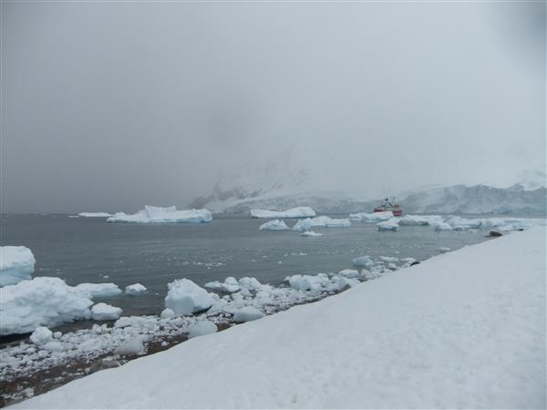 MS Expedition in Neko Harbour, Antarctica