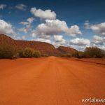 Road near Mount Augustus