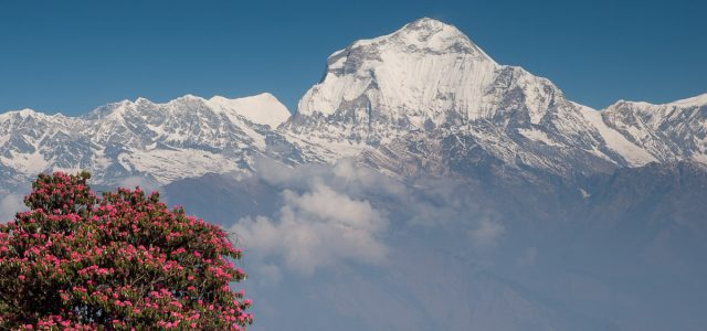 Today is International Mountain Day and Himalayas are the first thing comes in my mind then I think about mountains.